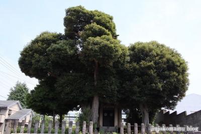 稲荷神社(板橋区小茂根)4