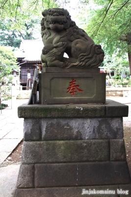 氷川神社(練馬区氷川台)7