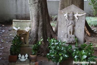 春日神社(練馬区春日町)25