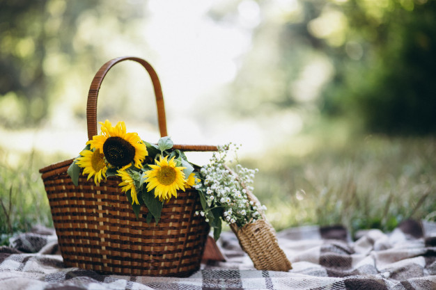 picnic-basket-with-fruit-and-flowers-on-blanket_1303-10665.jpg