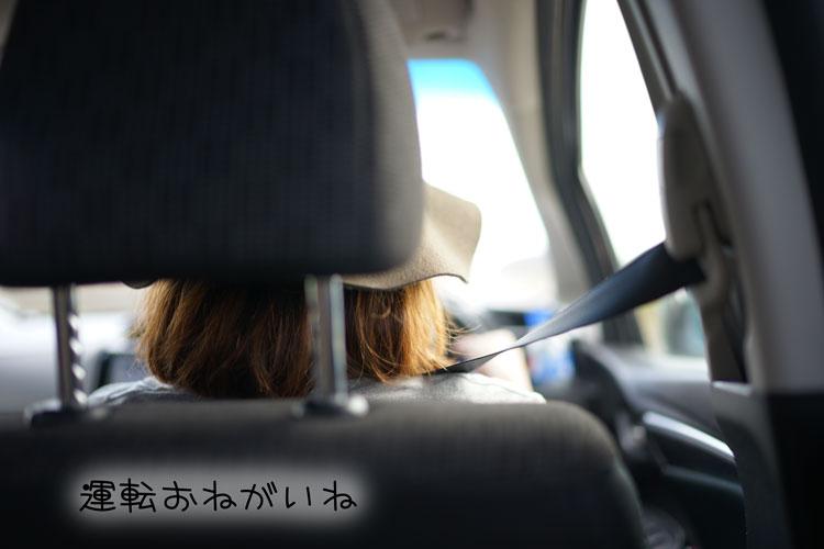 04-10_7570.jpg