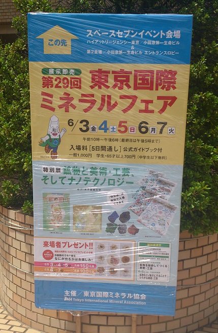 DSC_0340-1.jpg