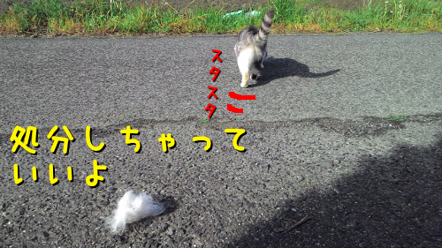 2016041917020098a.png