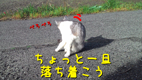 2016041917022633b.png