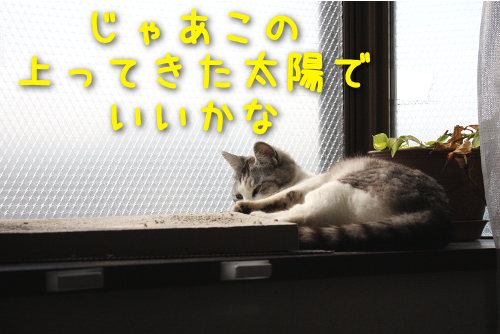 201604282031059f6.png