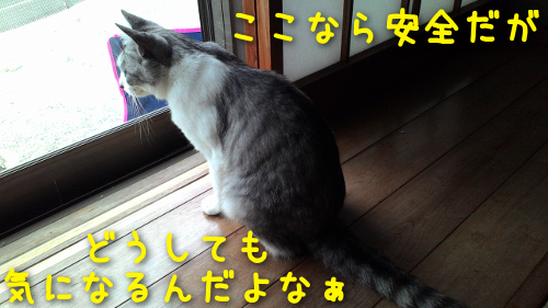 20160618130329013.png