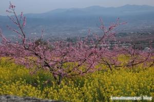 桃の花まつり3