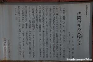 浅間神社(笛吹市一宮町一ノ宮)57