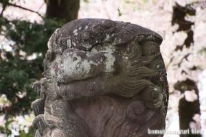 富士山本宮浅間大社(静岡県富士宮市宮町)20