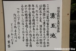 富士山本宮浅間大社(静岡県富士宮市宮町)32