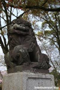 富士山本宮浅間大社(静岡県富士宮市宮町)11