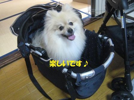 20160715c_14.jpg
