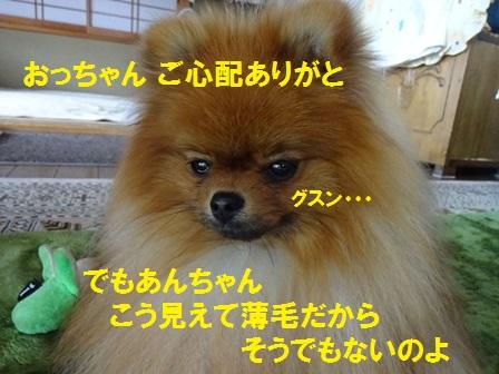20160608121326472.jpg