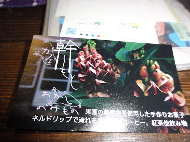 DSC04234.jpg