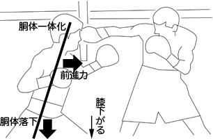 shinsoku2.jpg