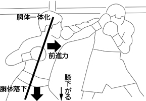 shinsoku3.jpg