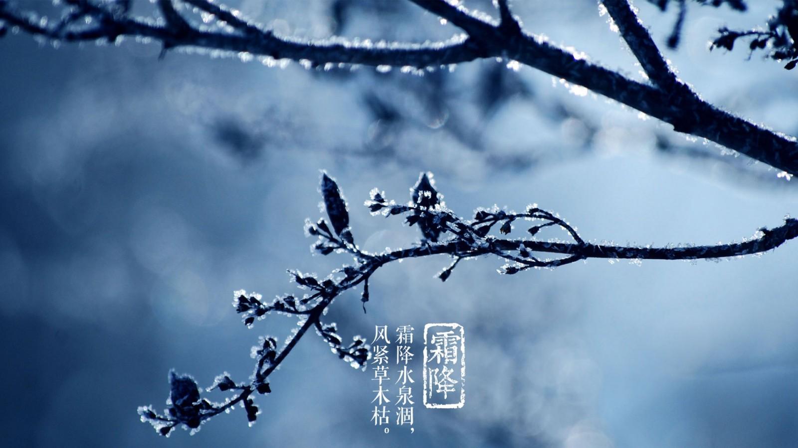 霜降 | 【こころの旅】 ー占いを...