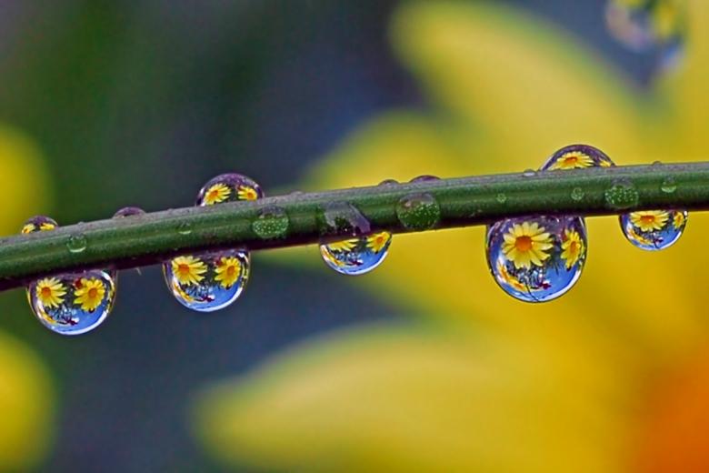 rain photography ideas