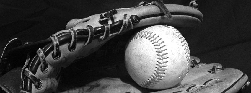baseball_glove_cover_1.jpg