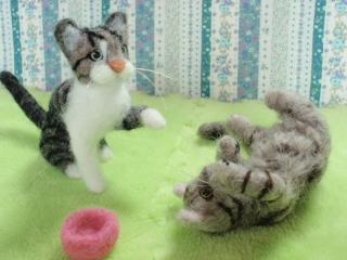 セツ子さん家の猫P7190030