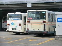 日光交通5177号車っぽい車と旧西武7E車