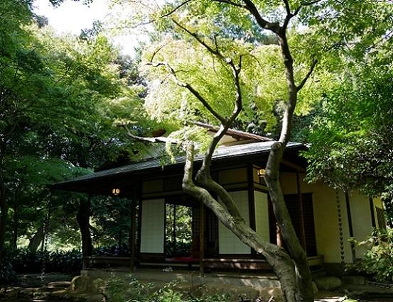 旧古河庭園日本庭園1