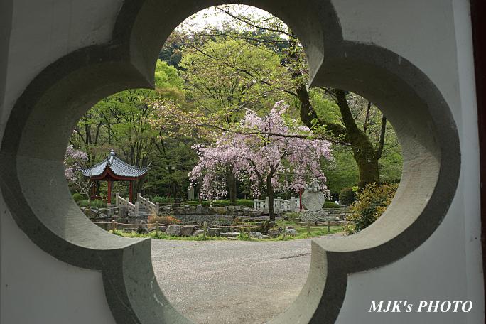 gifukouen6123.jpg