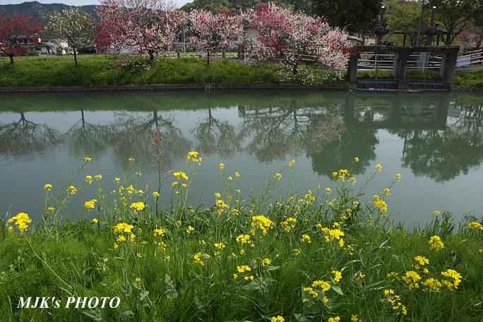 katsuragawa6128.jpg