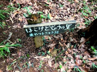 ☆DSCN2783