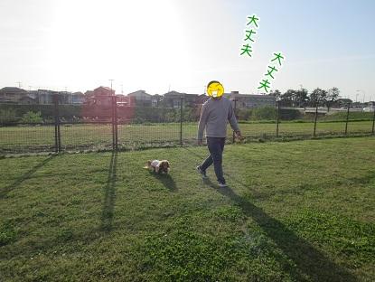 kinako4668.jpg