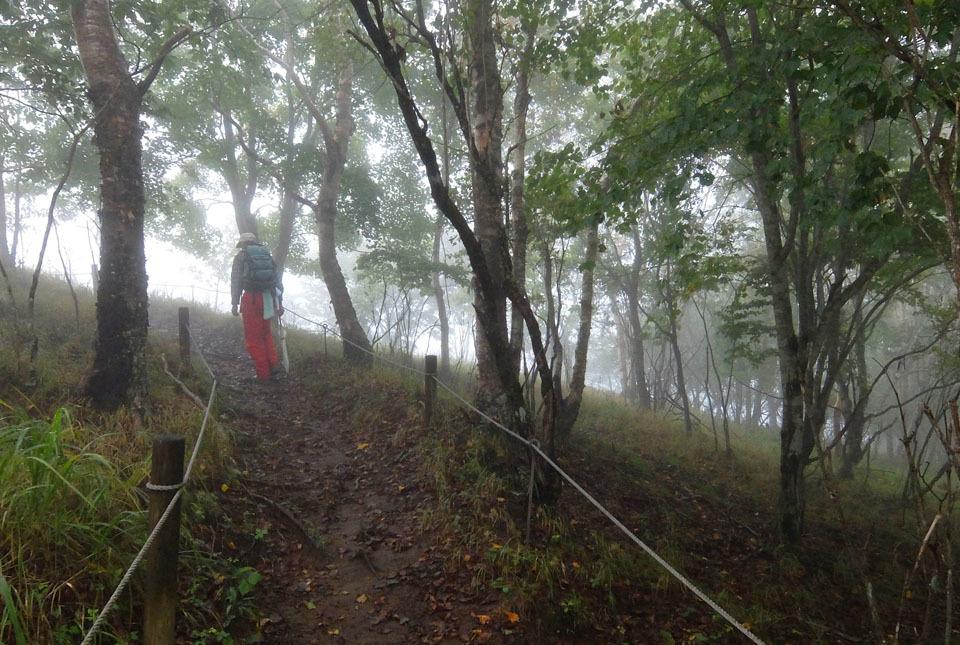 5549 霧の中を歩く 960×645