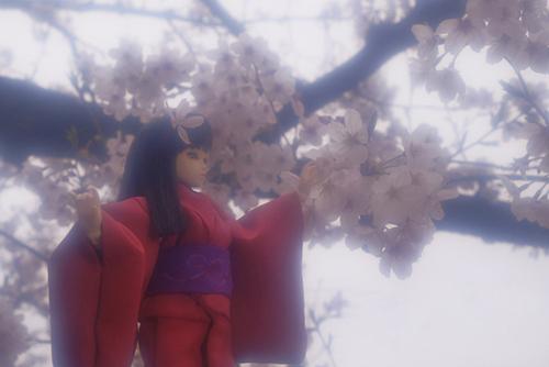 PARABOX、27cmノーマルボディ、グレーテルヘッド、メイクカスタム、自作のお着物を着せて、桜と一緒に撮影しました