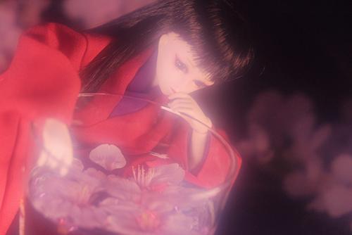 PARABOX、27cmノーマルボディ、グレーテルヘッド、メイクカスタム、自作の着物で、グラスに落ちてきた桜の花を浮かべて、お花見する小夜子さん