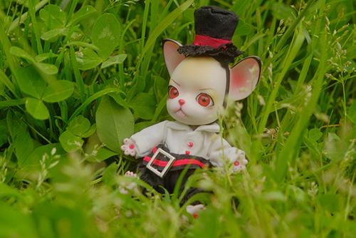 球体関節人形の動物ドール、パンジュ・ブラックルシアン、我が家のロイを野原へ連れて行きました