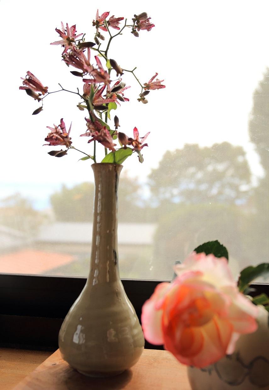 ブログ 朝、花を庭から切り出して窓辺に活ける.jpg