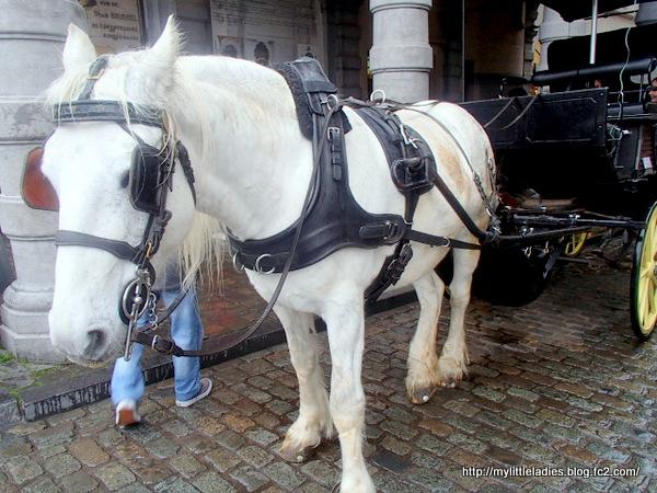 グランプラス 白馬 馬車