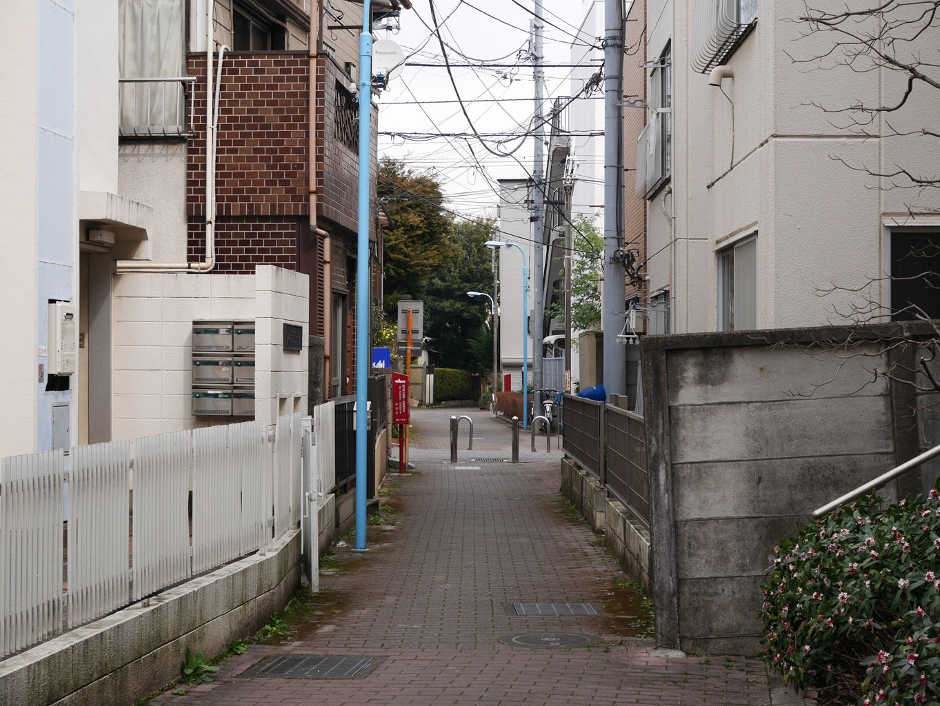 01momozonokawa_ankyo04.jpg