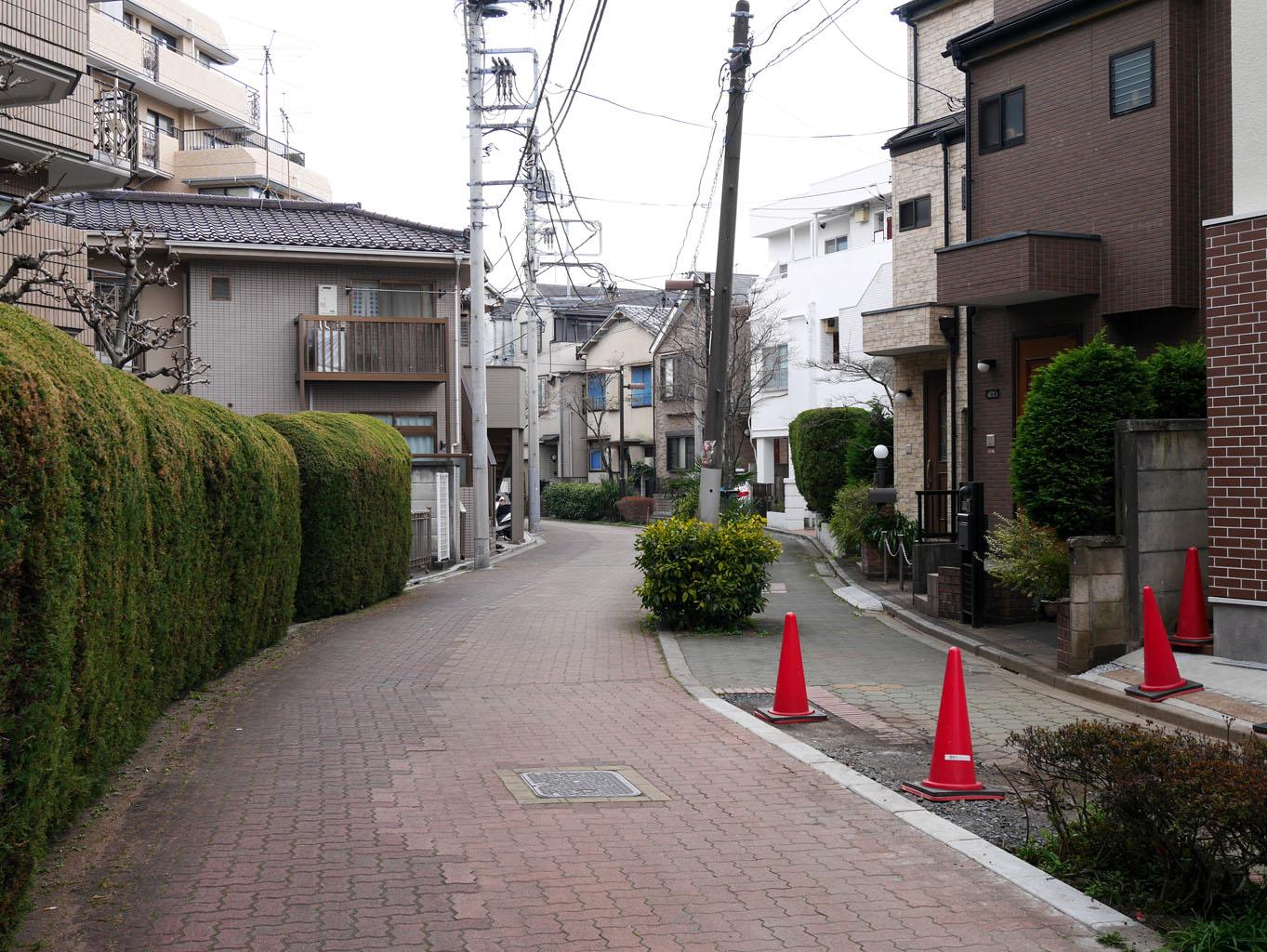 01momozonokawa_ankyo16.jpg