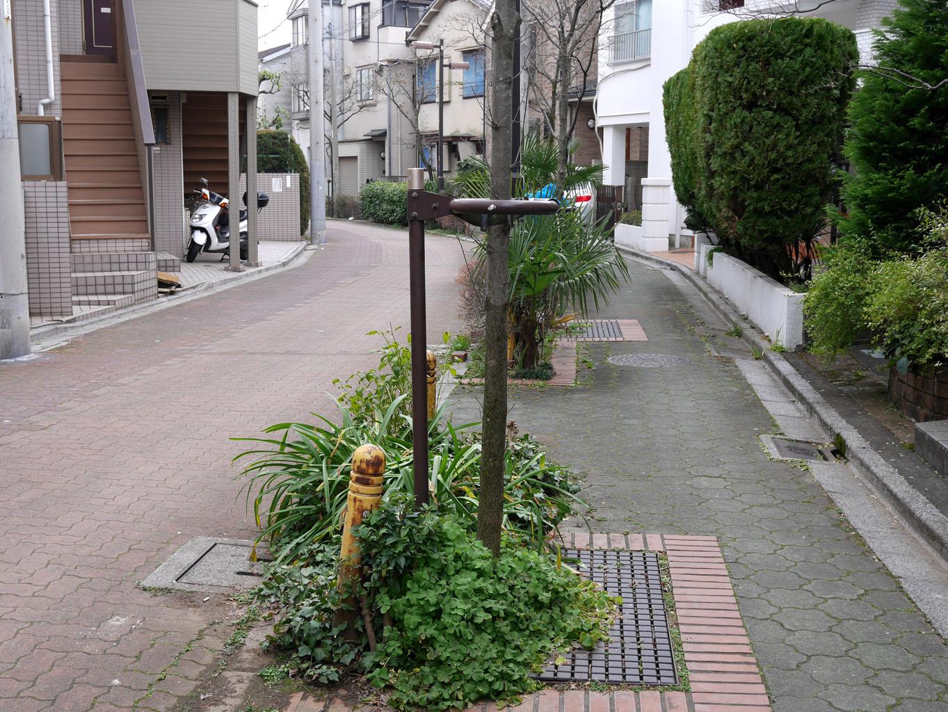01momozonokawa_ankyo17.jpg