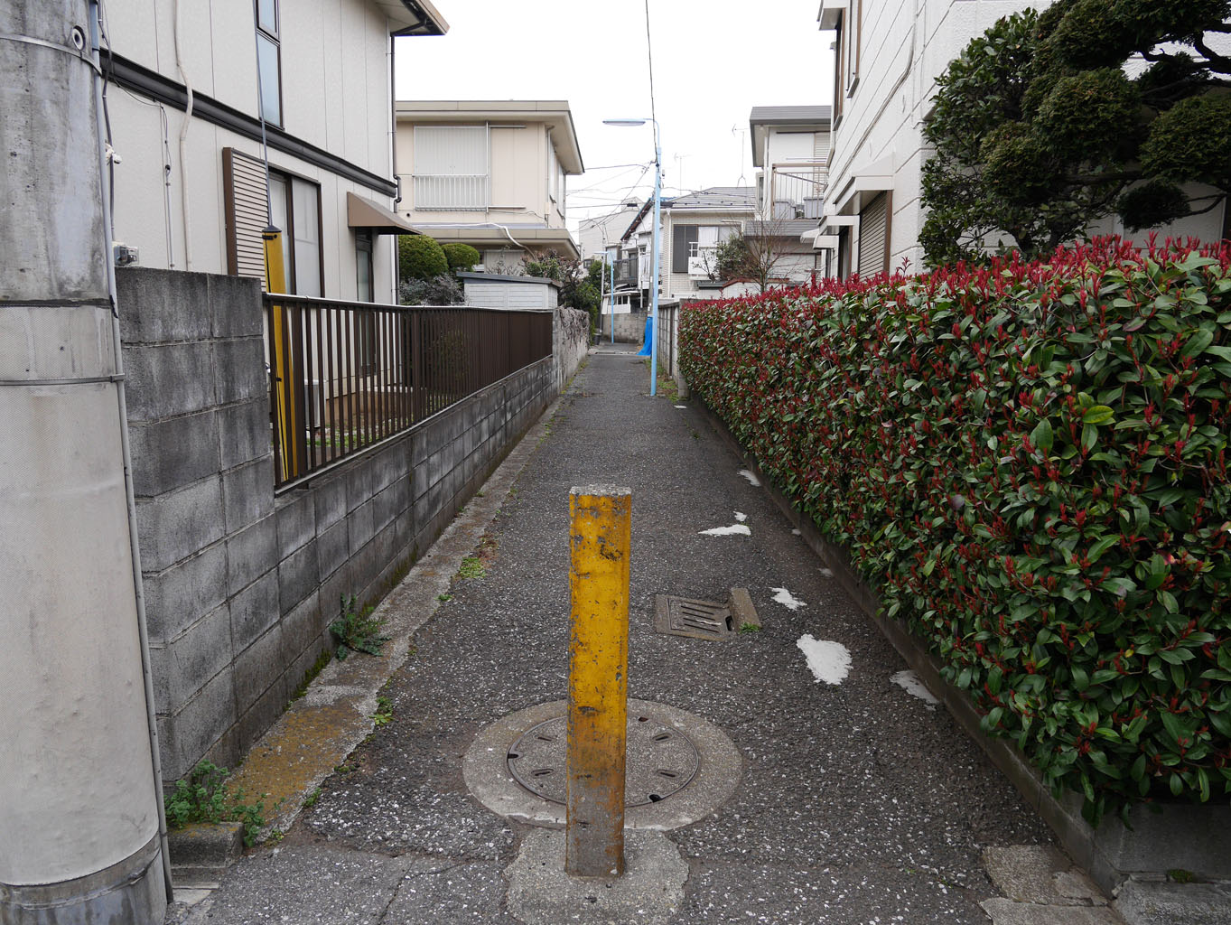 01momozonokawa_ankyo24.jpg