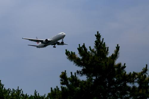 飛行機 ・・・ サムネイル画像