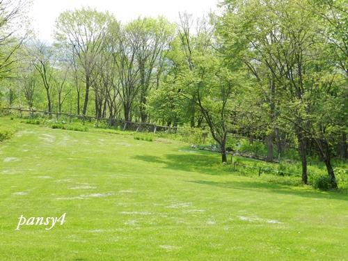 北邦野草園