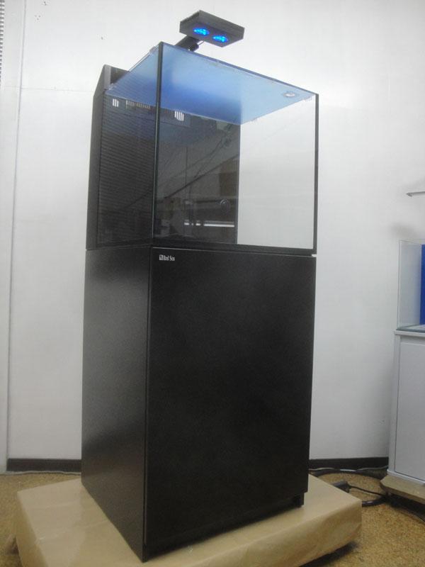 DSC02226.jpg