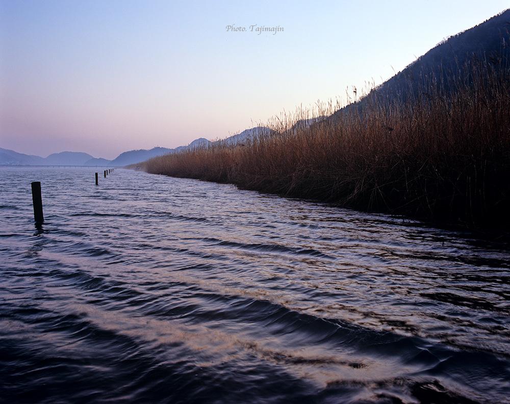 円山川-161