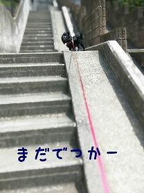 2016-05-01_17_49335.jpg