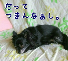 2016-05-19_14_49986.jpg