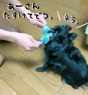 2016-05-23_21_50343.jpg