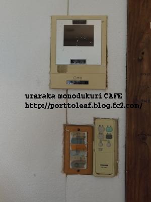 IMGP9141.jpg
