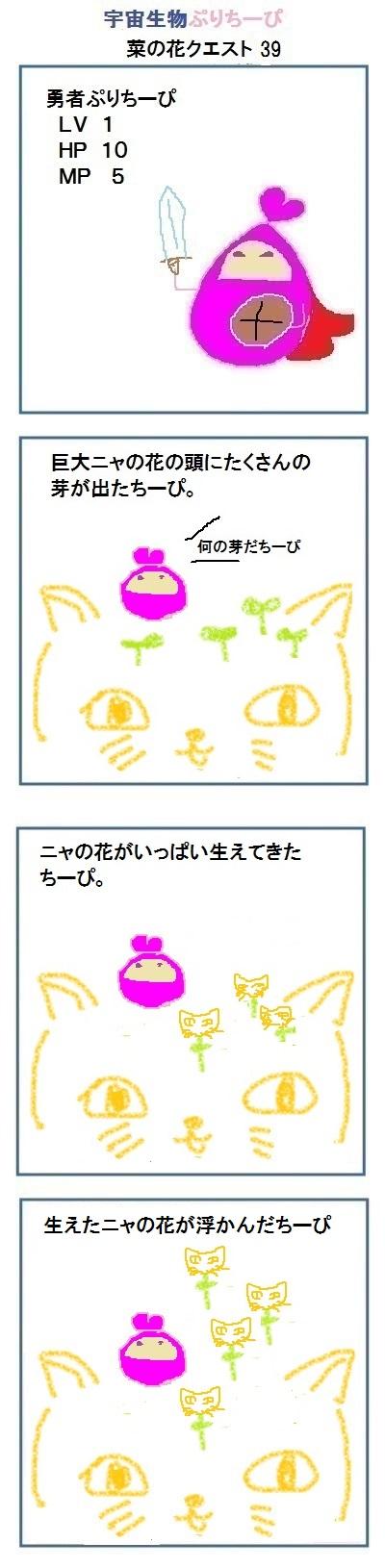 160422_nanohana_quest39.jpg