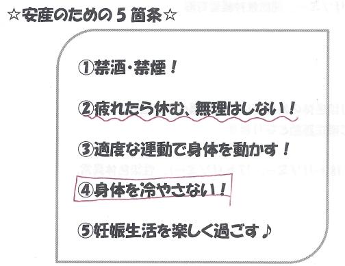 Ninshin-shokiS.jpg